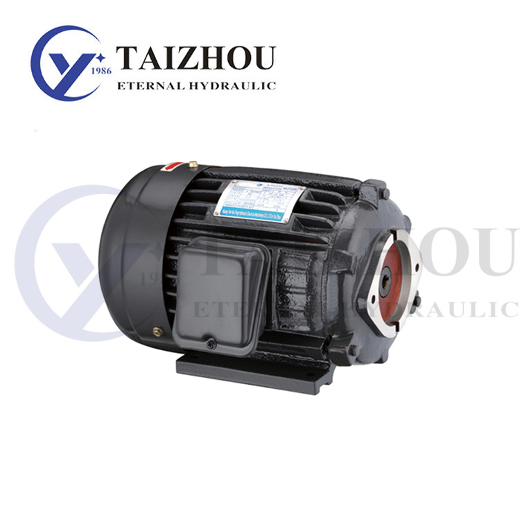 Horizontal Inside Shaft Hydraulic Electric Motor