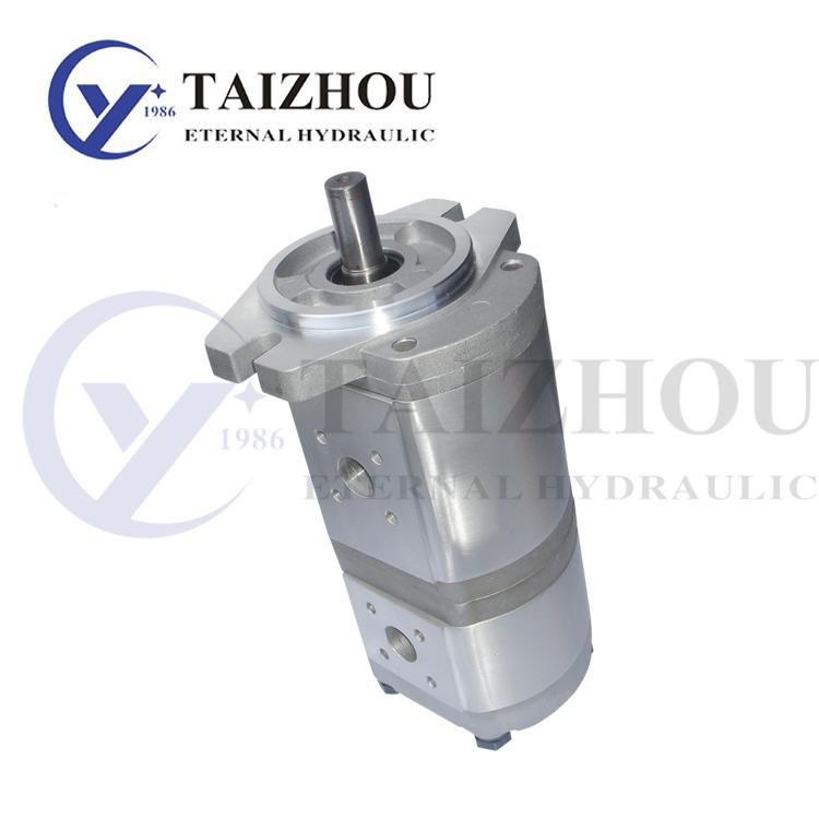 CBK-1000 Double Gear Pump