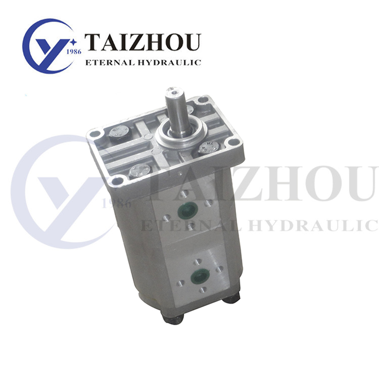 CBN-E300_E300 Double Gear Pump