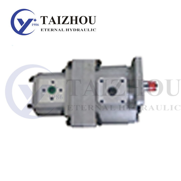 CBN-E500 300 Double Gear Pump