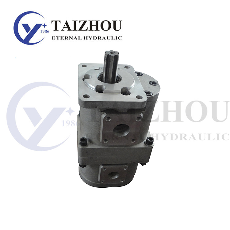 CBN-E500 Double Gear Pump