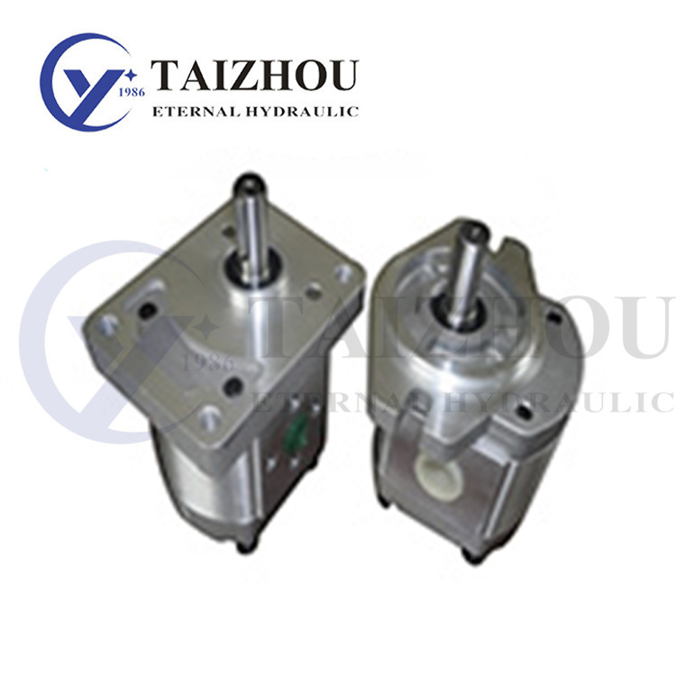CBW-F300 Gear Pump