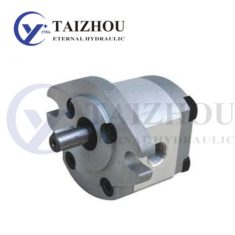 RGP Gear Pump