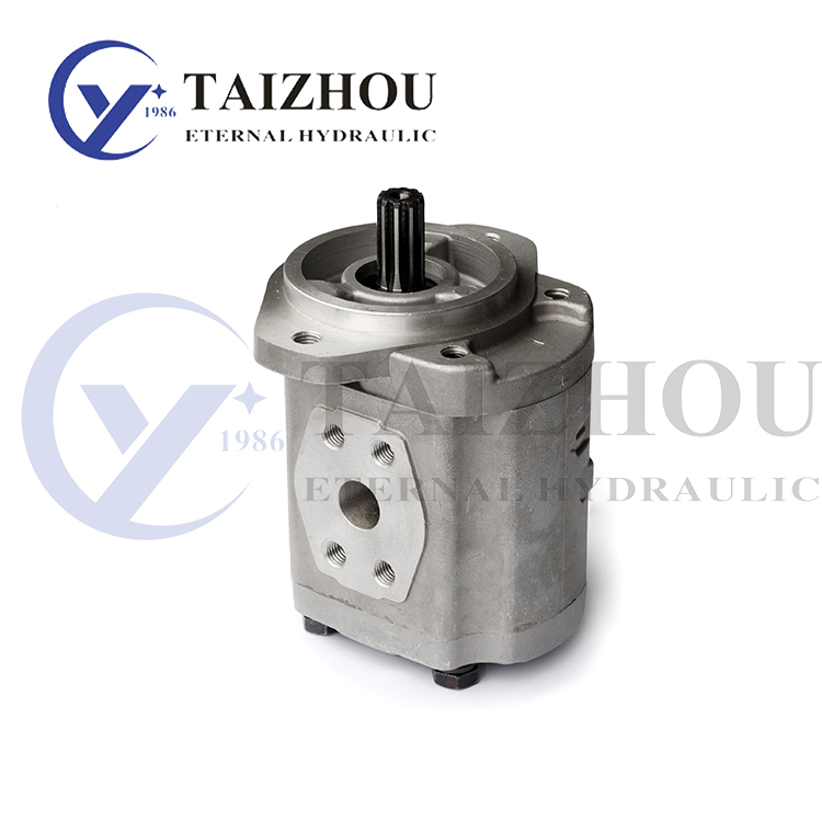 KZP4/KRP4 Series Gear Pump