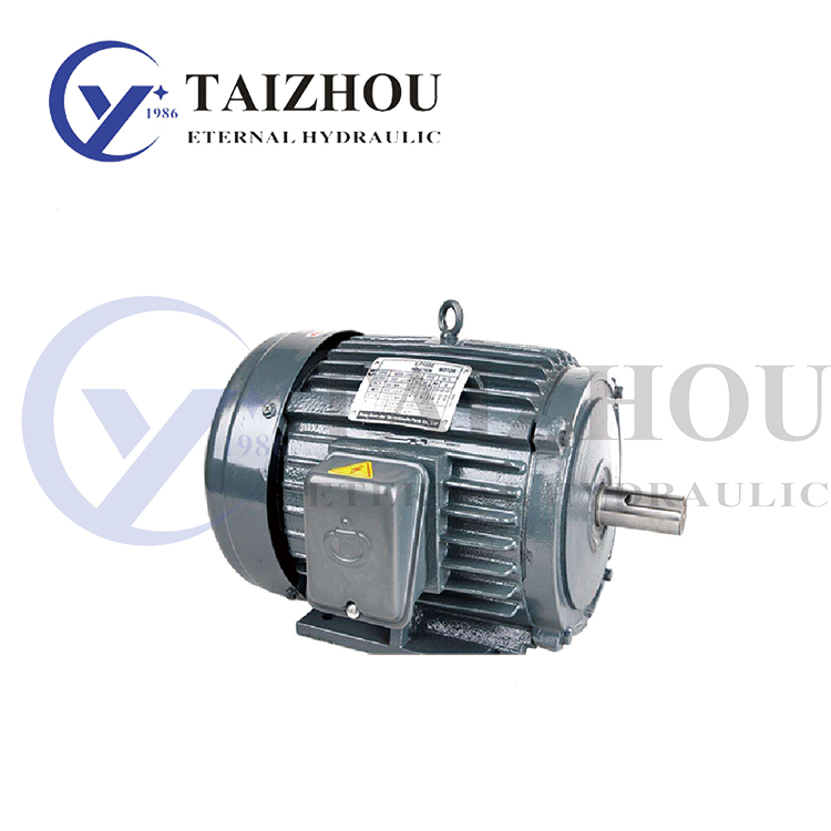 Horizontal Outside Shaft Hydraulic Electric Motor